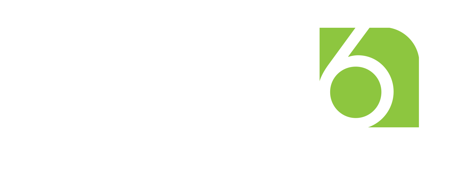 level 6 marketing logo